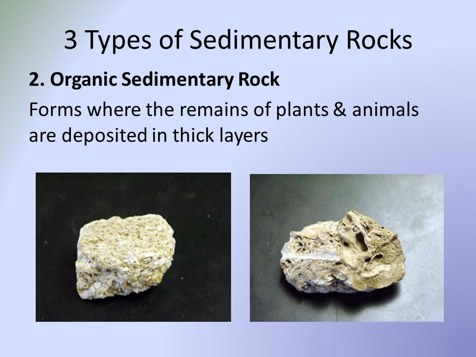 Sedimentary Rocks Sedimentary rocks are classified by the types of ...