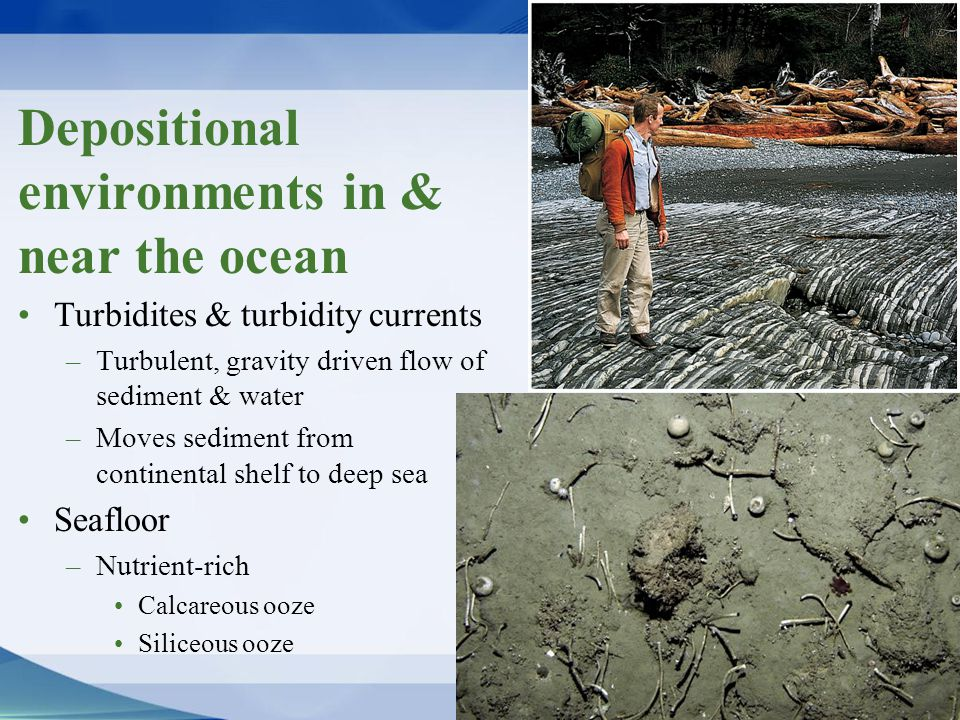 Depositional environments in & near the ocean