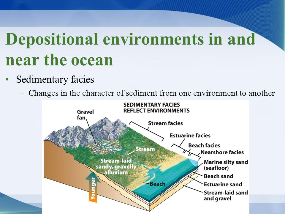 Depositional environments in and near the ocean