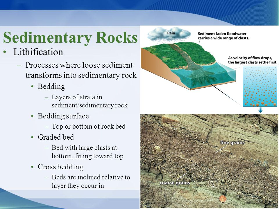 Sedimentary Rocks Lithification