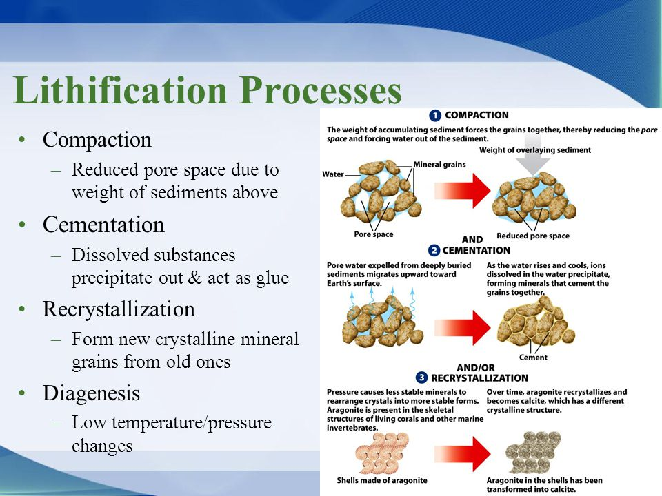 Lithification Processes