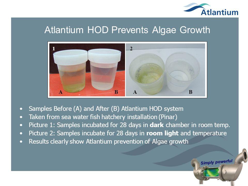Atlantium HOD Prevents Algae Growth