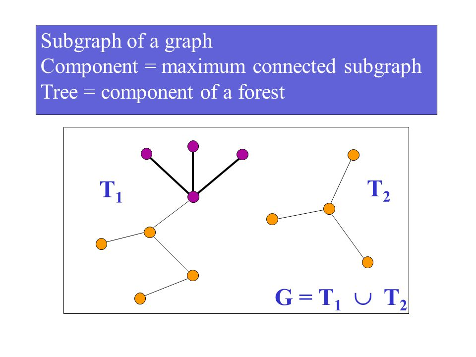 T1 T2 G = T1  T2 Subgraph of a graph