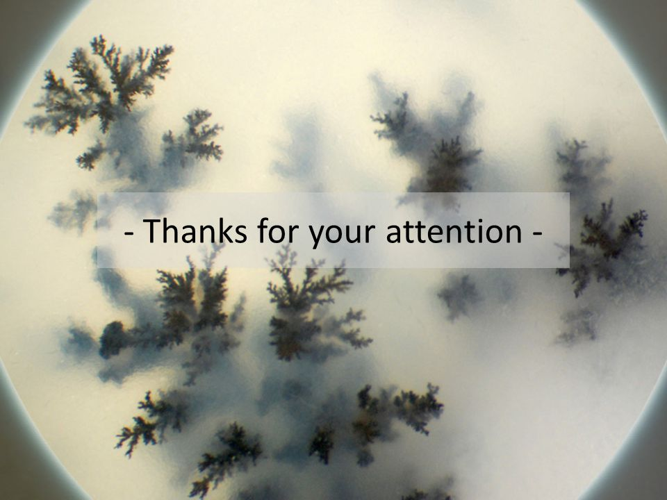 - Thanks for your attention -