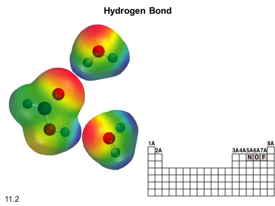 Hydrogen Bond 11.2