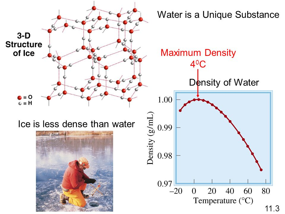 Ice is less dense than water