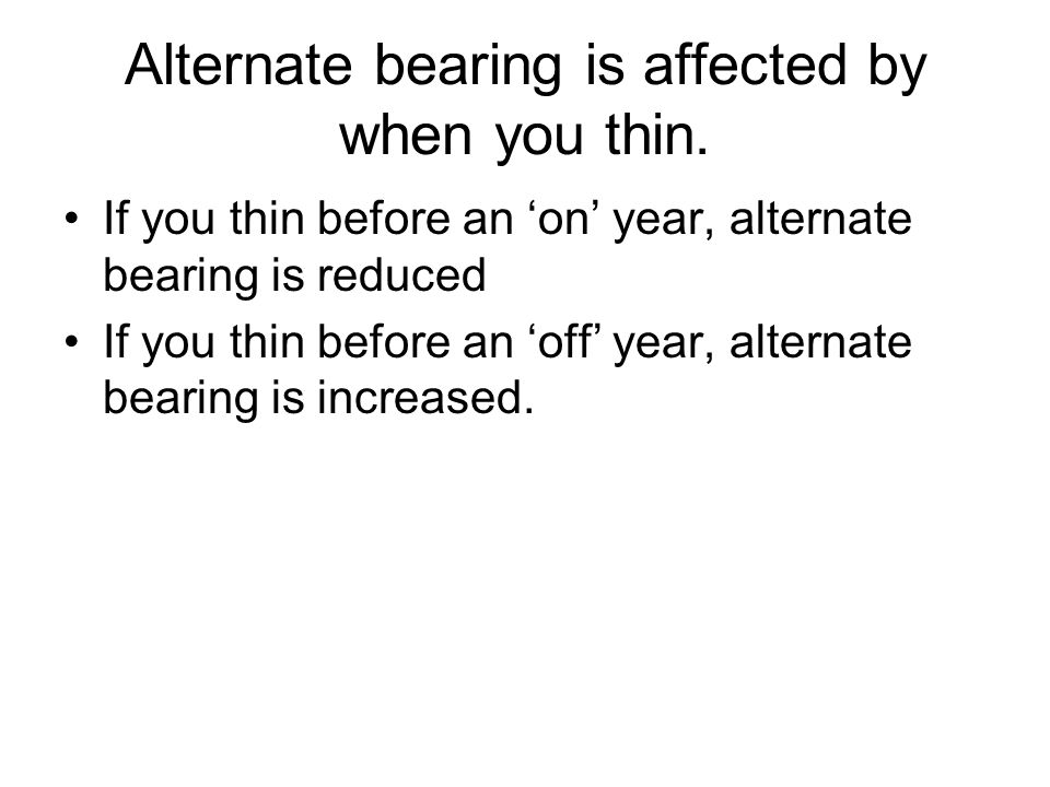 Alternate bearing is affected by when you thin.