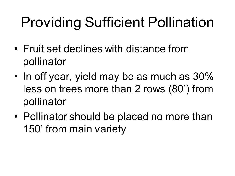 Providing Sufficient Pollination