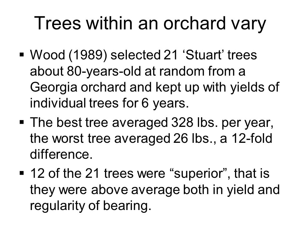 Trees within an orchard vary