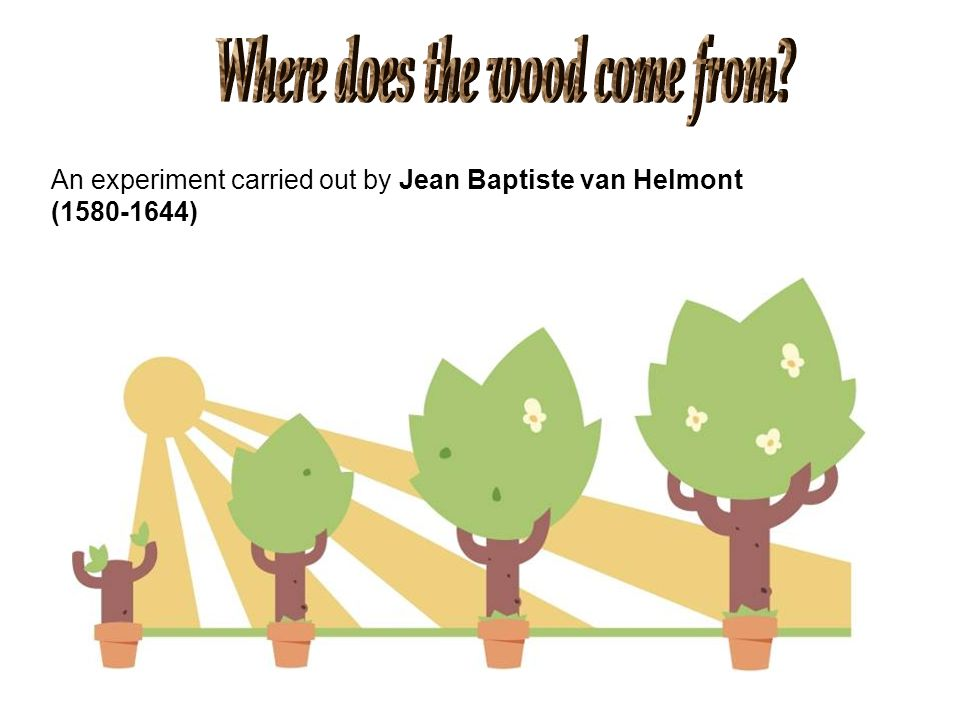 Where does the wood come from