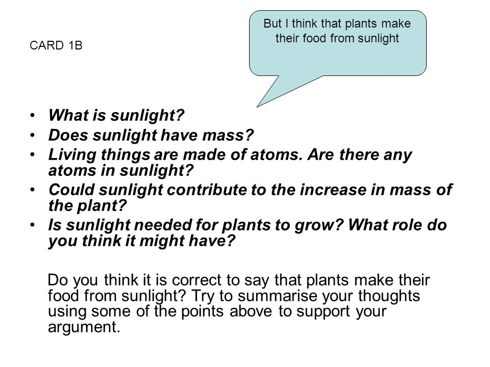 But I think that plants make their food from sunlight
