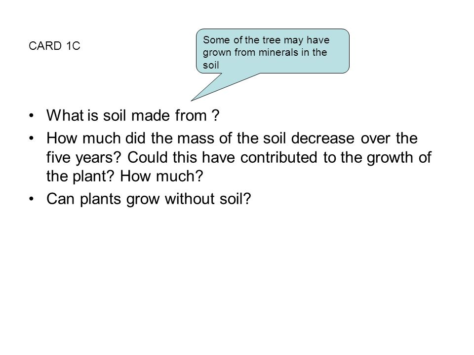 Can plants grow without soil
