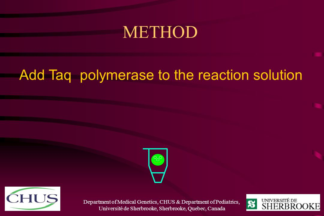 METHOD Add Taq polymerase to the reaction solution