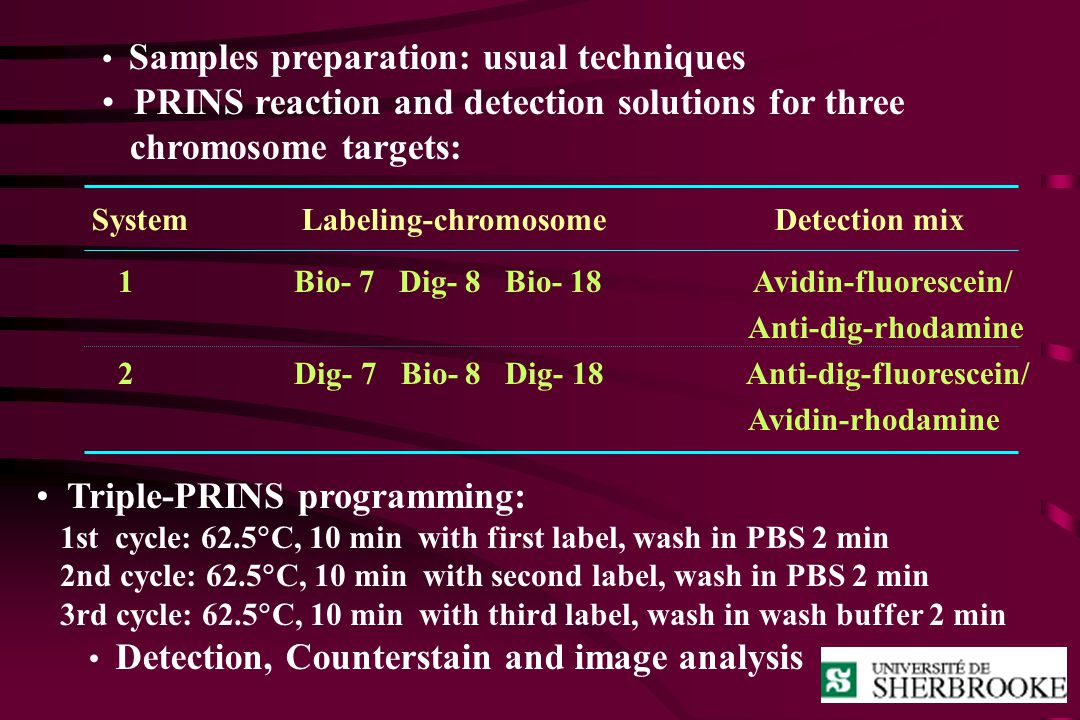 PRINS reaction and detection solutions for three chromosome targets: