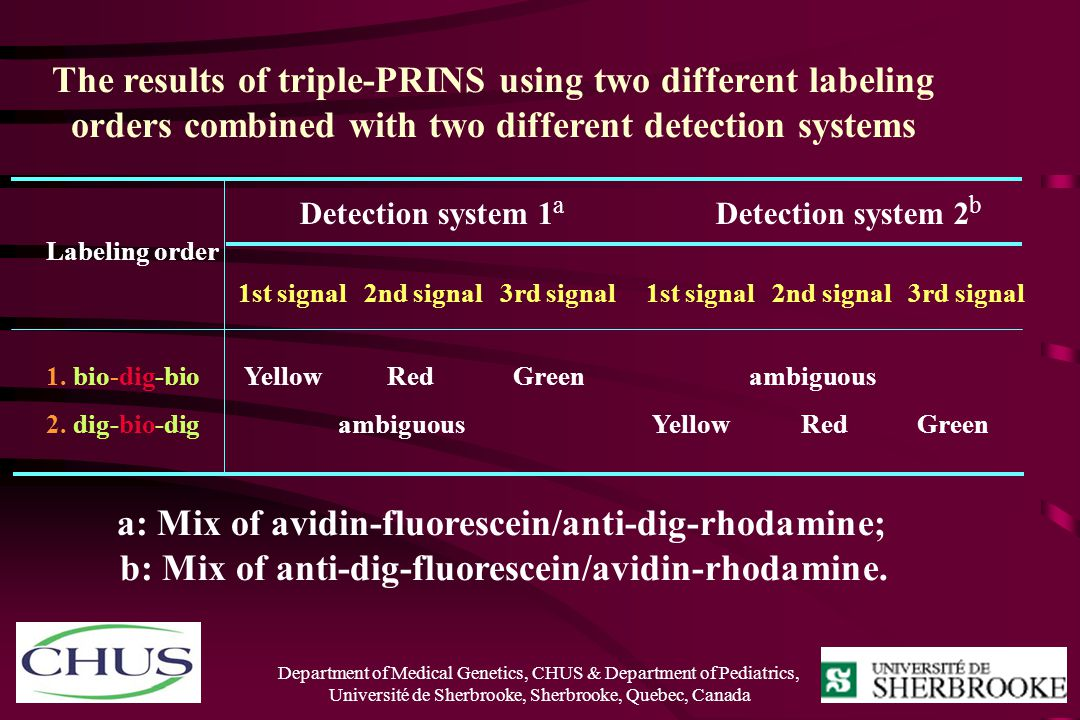 Detection system 1a Detection system 2b