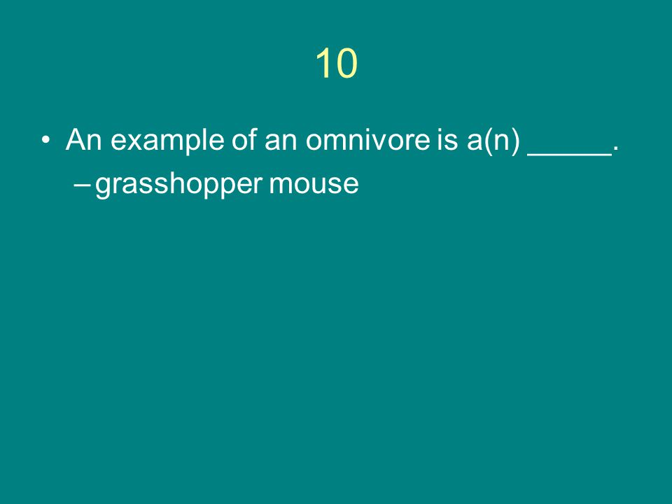10 An example of an omnivore is a(n) _____. grasshopper mouse