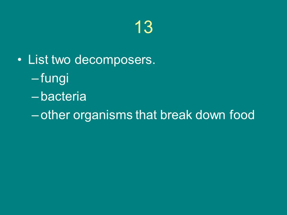 13 List two decomposers. fungi bacteria