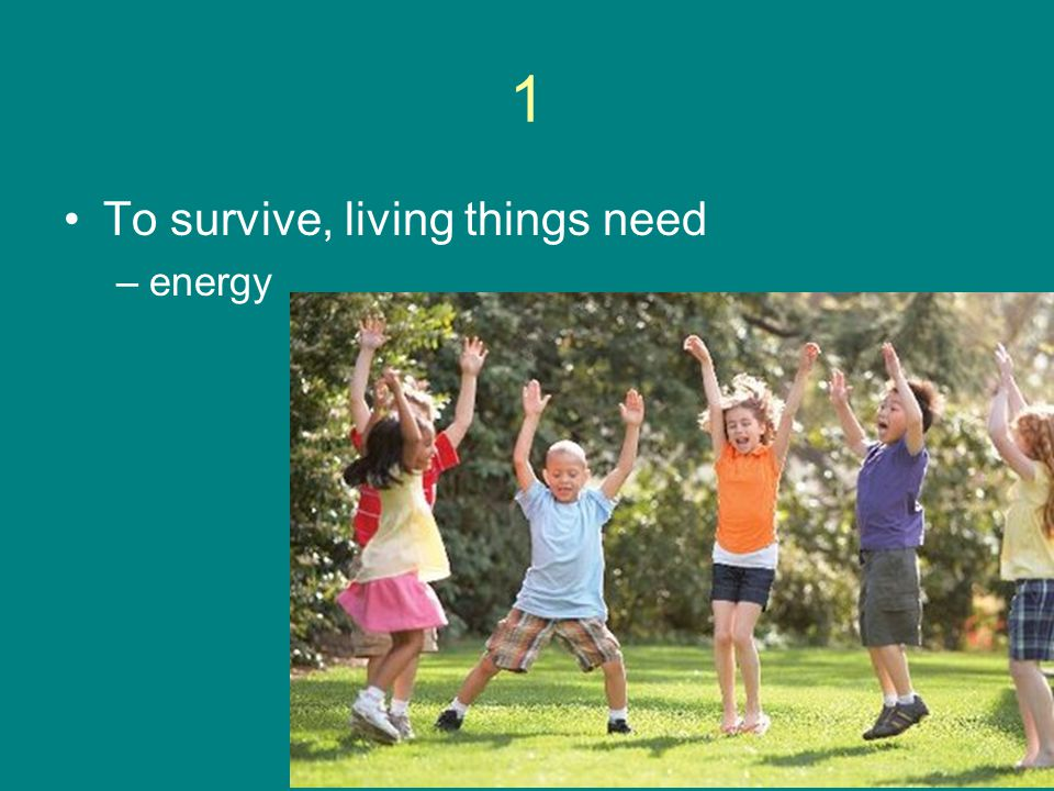 1 To survive, living things need energy