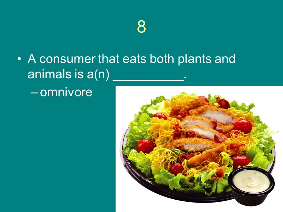 8 A consumer that eats both plants and animals is a(n) __________.