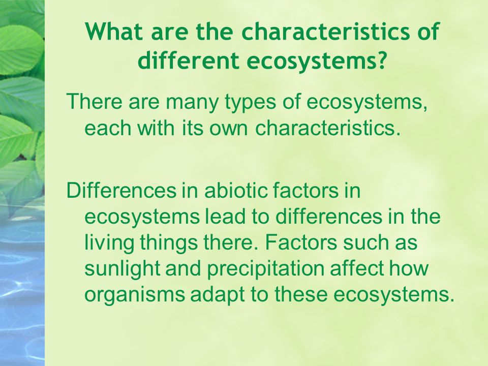 What are the characteristics of different ecosystems