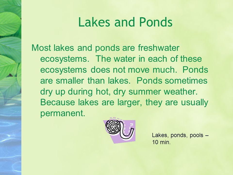 Lakes and Ponds