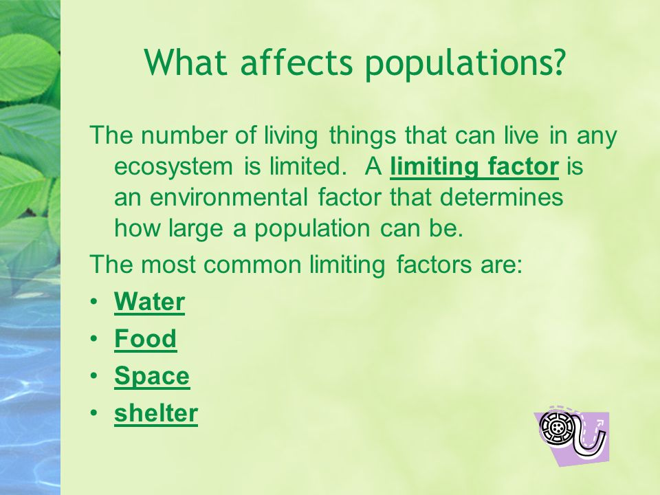 What affects populations