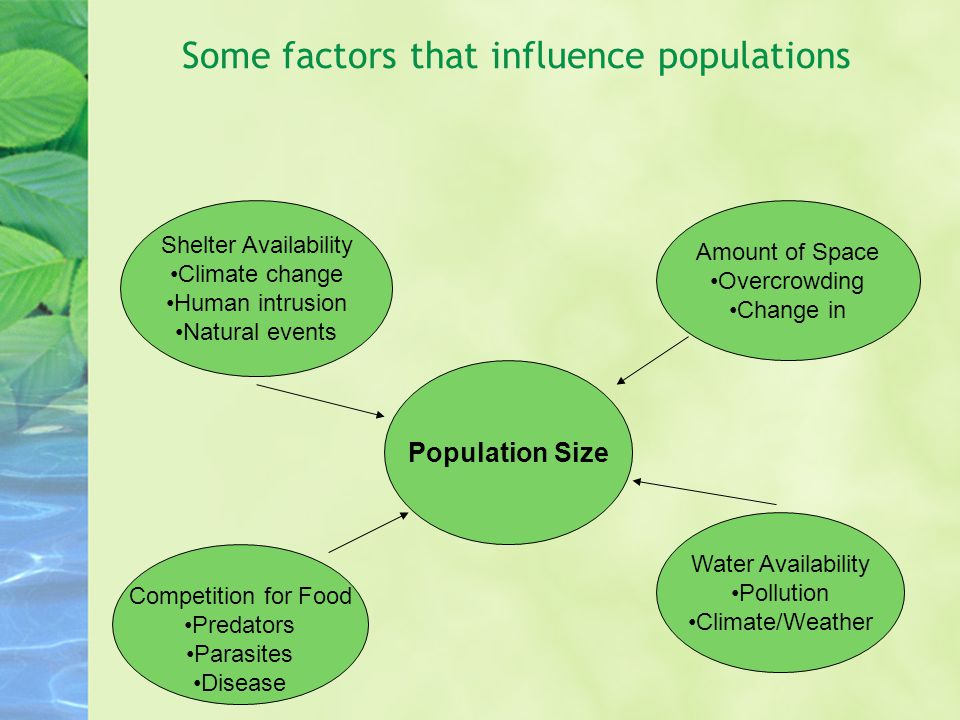 Some factors that influence populations