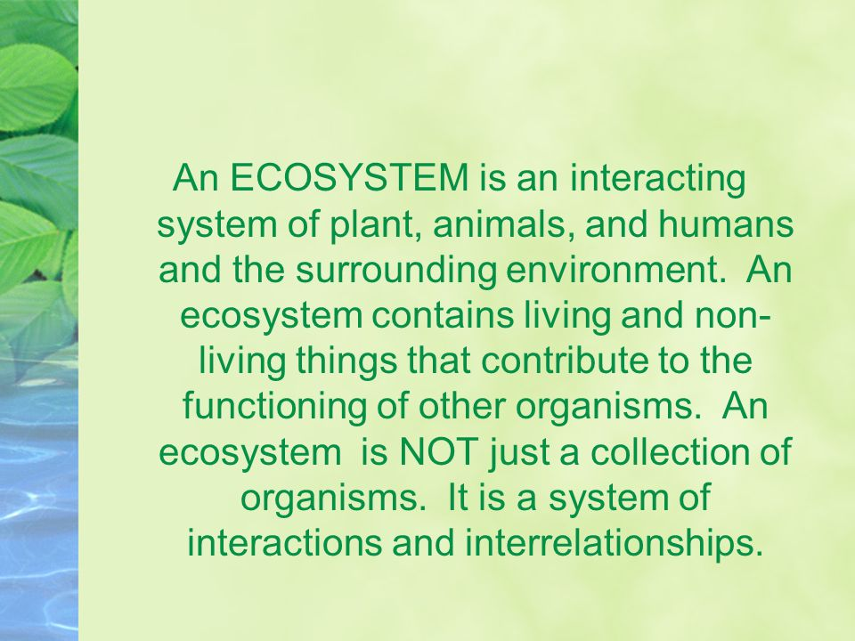 An ECOSYSTEM is an interacting system of plant, animals, and humans and the surrounding environment.