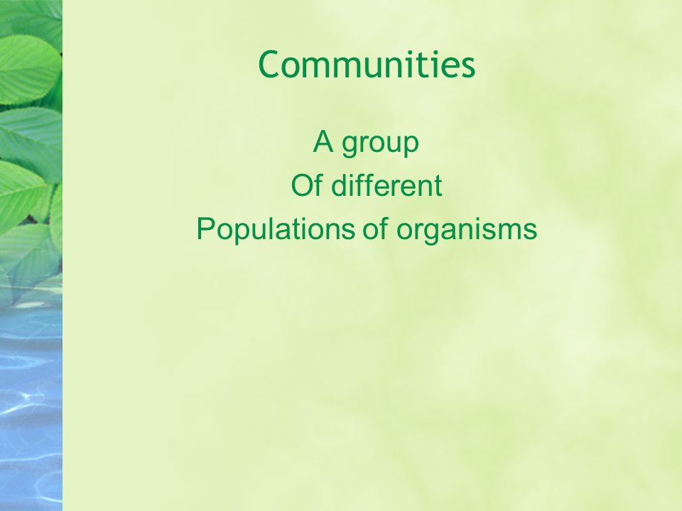 Populations of organisms