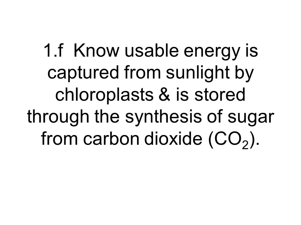 1.f Know usable energy is captured from sunlight by chloroplasts & is stored through the synthesis of sugar from carbon dioxide (CO2).