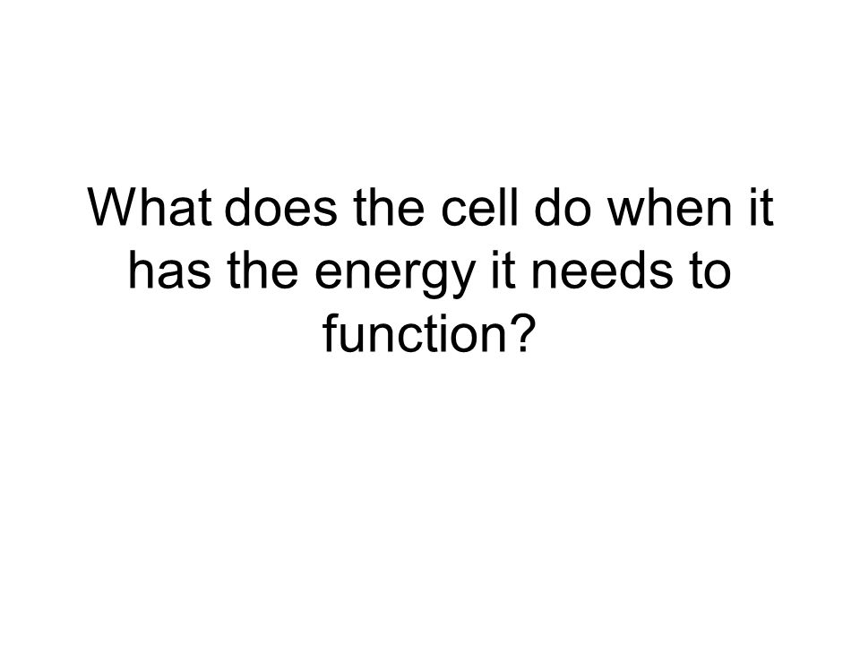 What does the cell do when it has the energy it needs to function