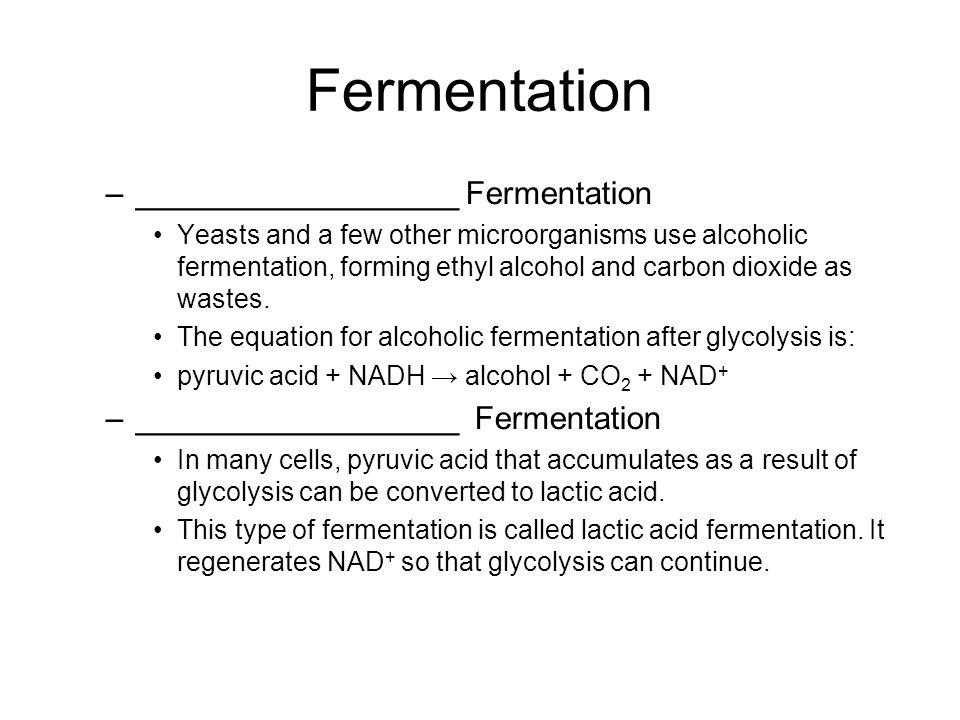 Fermentation __________________ Fermentation