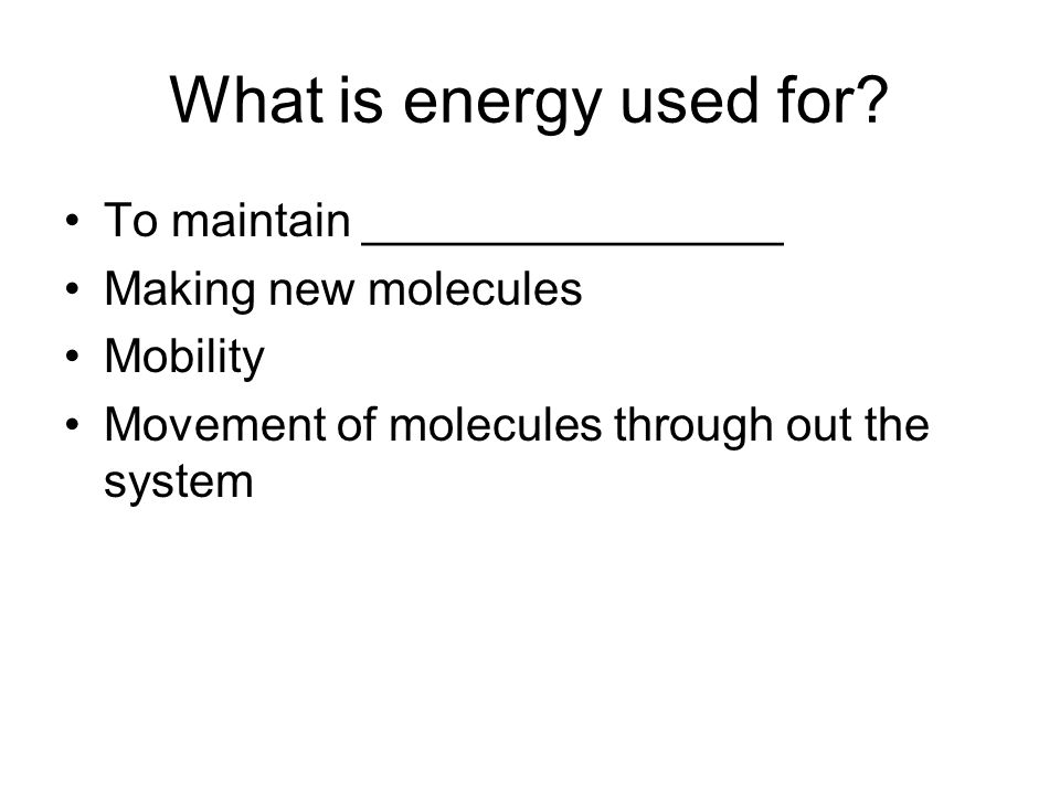 What is energy used for To maintain ________________