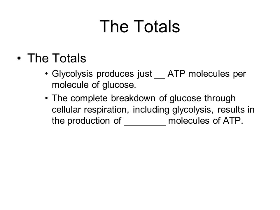 The Totals The Totals. Glycolysis produces just __ ATP molecules per molecule of glucose.
