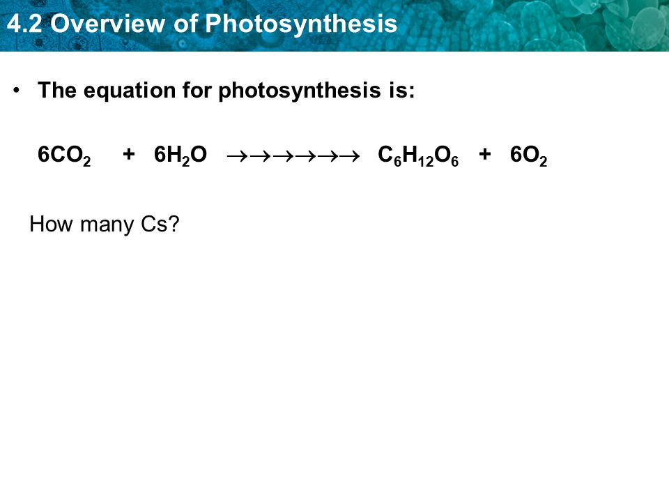 The equation for photosynthesis is: