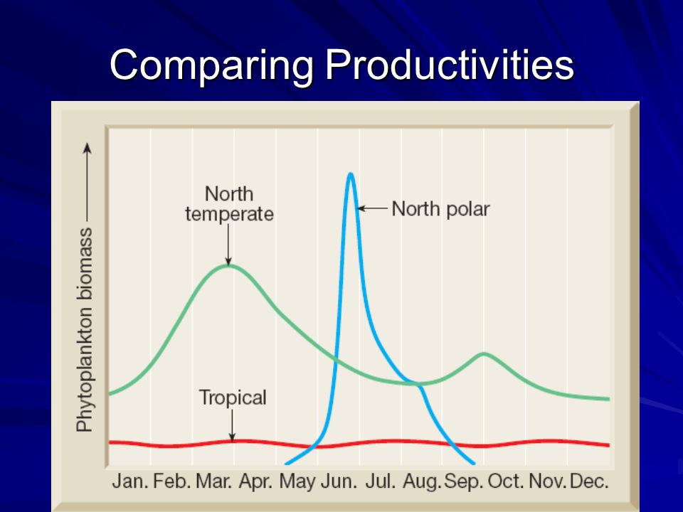 Comparing Productivities