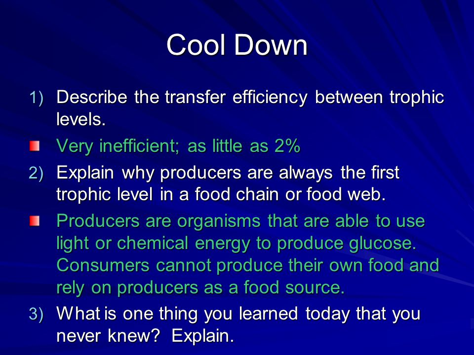 Cool Down Describe the transfer efficiency between trophic levels.