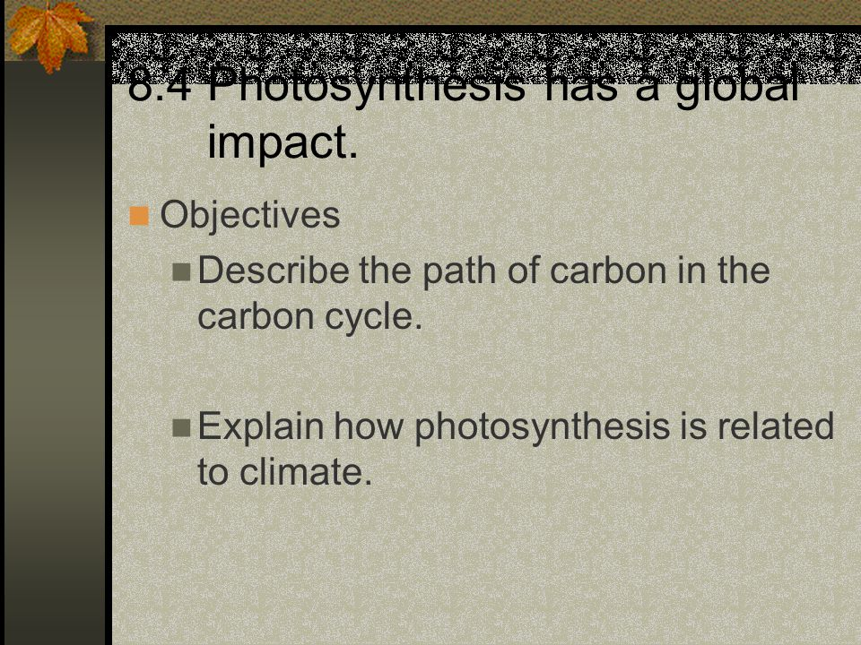 8.4 Photosynthesis has a global impact.