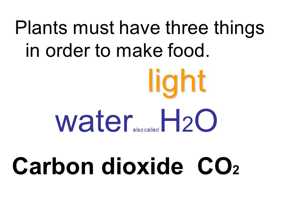 light wateralso calledH2O Carbon dioxide CO2