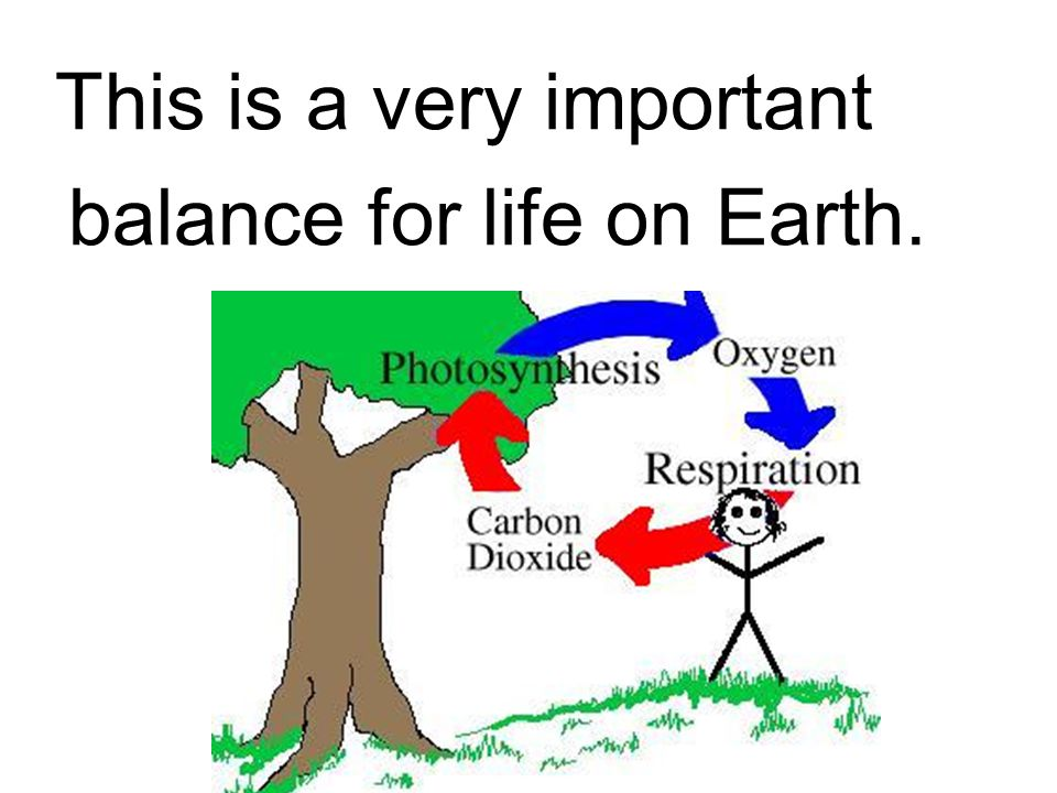 This is a very important balance for life on Earth.