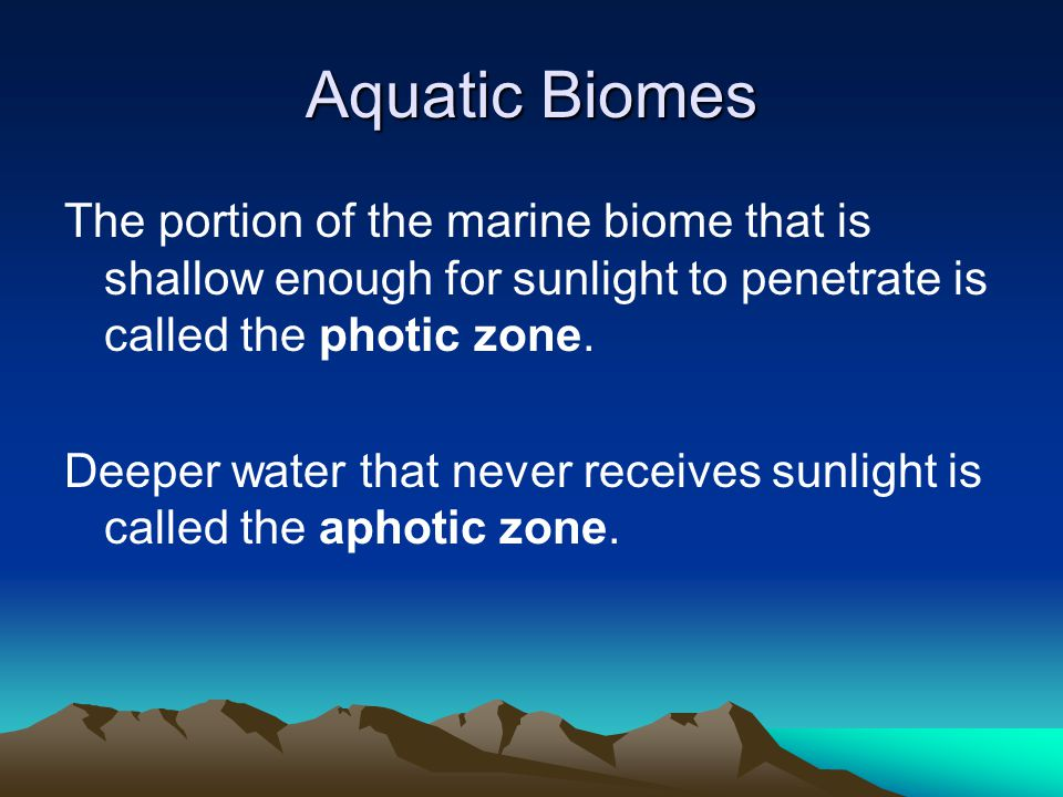 Aquatic Biomes The portion of the marine biome that is shallow enough for sunlight to penetrate is called the photic zone.