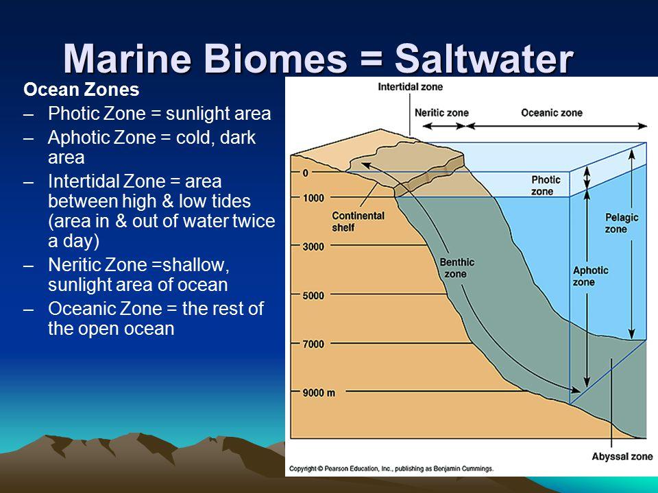 Marine Biomes = Saltwater