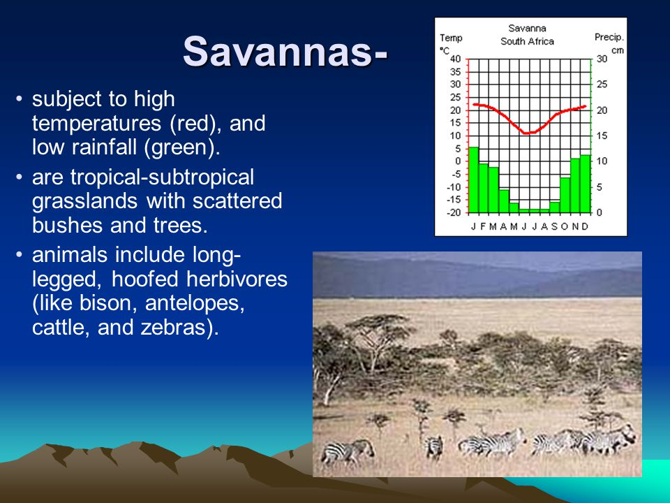 Savannas- subject to high temperatures (red), and low rainfall (green). are tropical-subtropical grasslands with scattered bushes and trees.