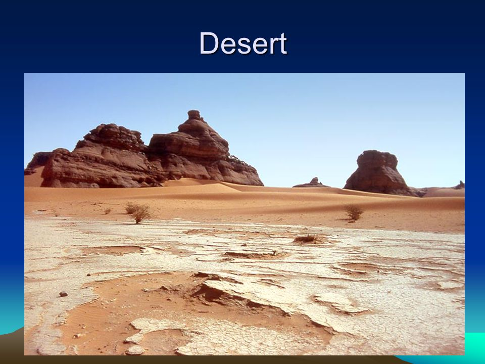 Desert Desert- an arid region with sparse to almost nonexistent plant life. Deserts usually get less than 25 cm of precipitation annually.
