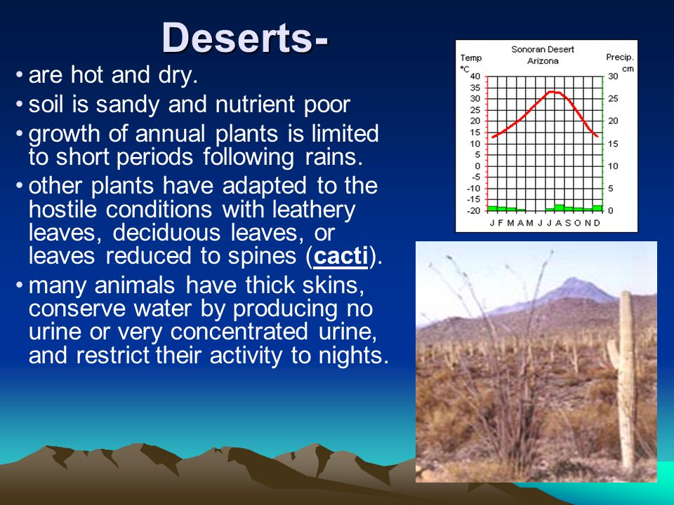 Deserts- are hot and dry. soil is sandy and nutrient poor
