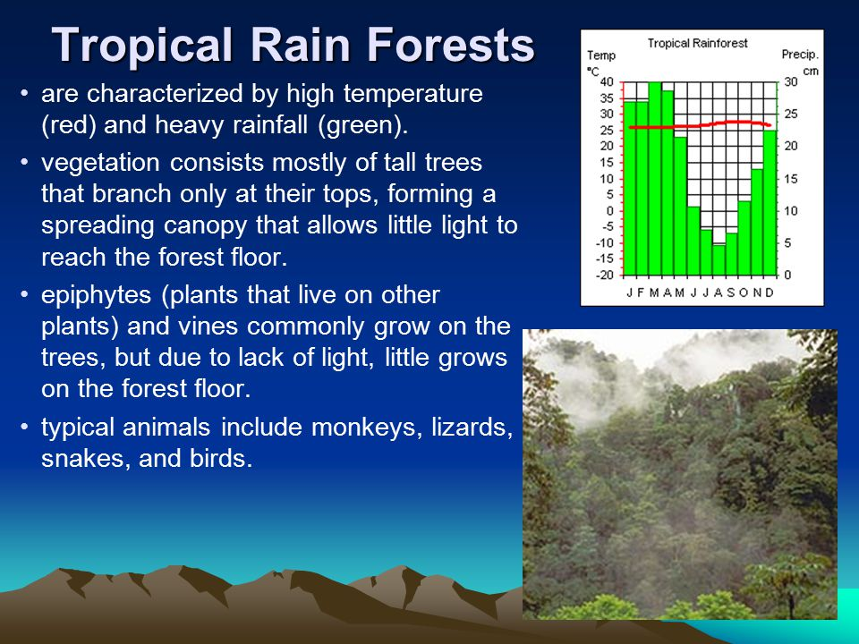 Tropical Rain Forests are characterized by high temperature (red) and heavy rainfall (green).