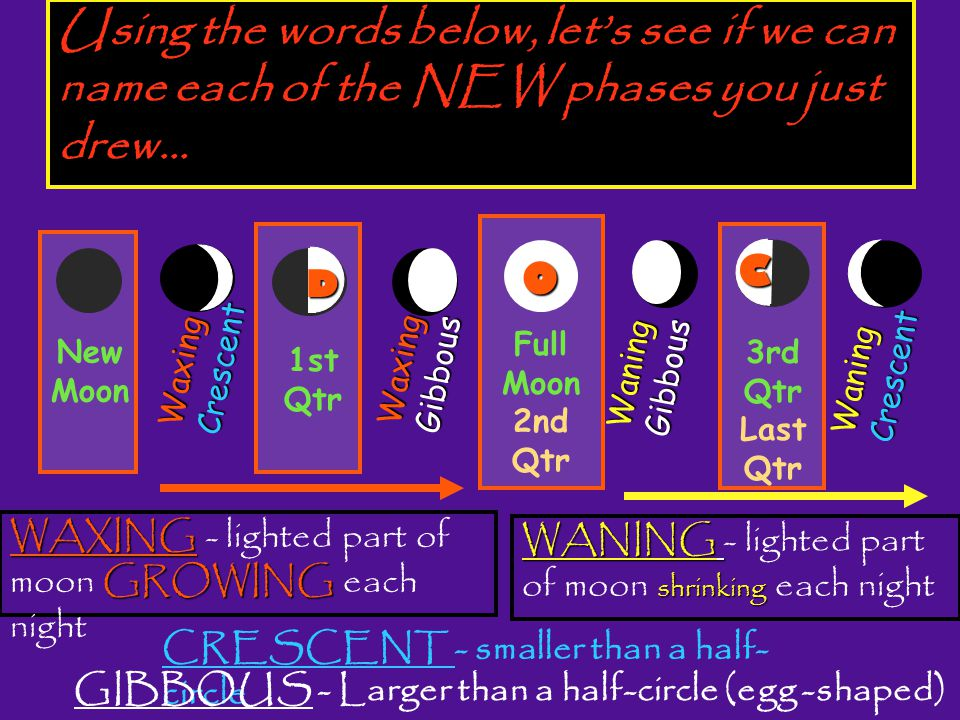 Using the words below, let's see if we can name each of the NEW phases you just drew…