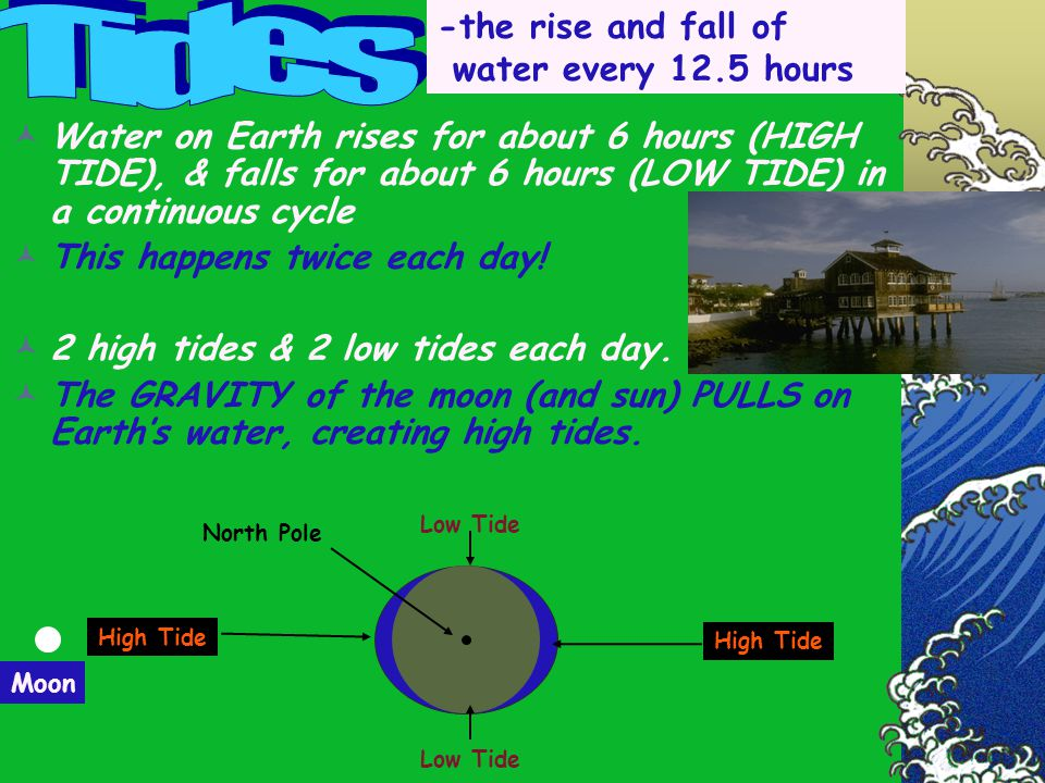 Tides -the rise and fall of water every 12.5 hours