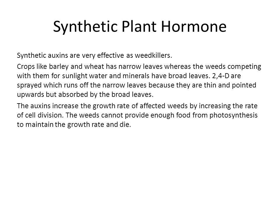 Synthetic Plant Hormone