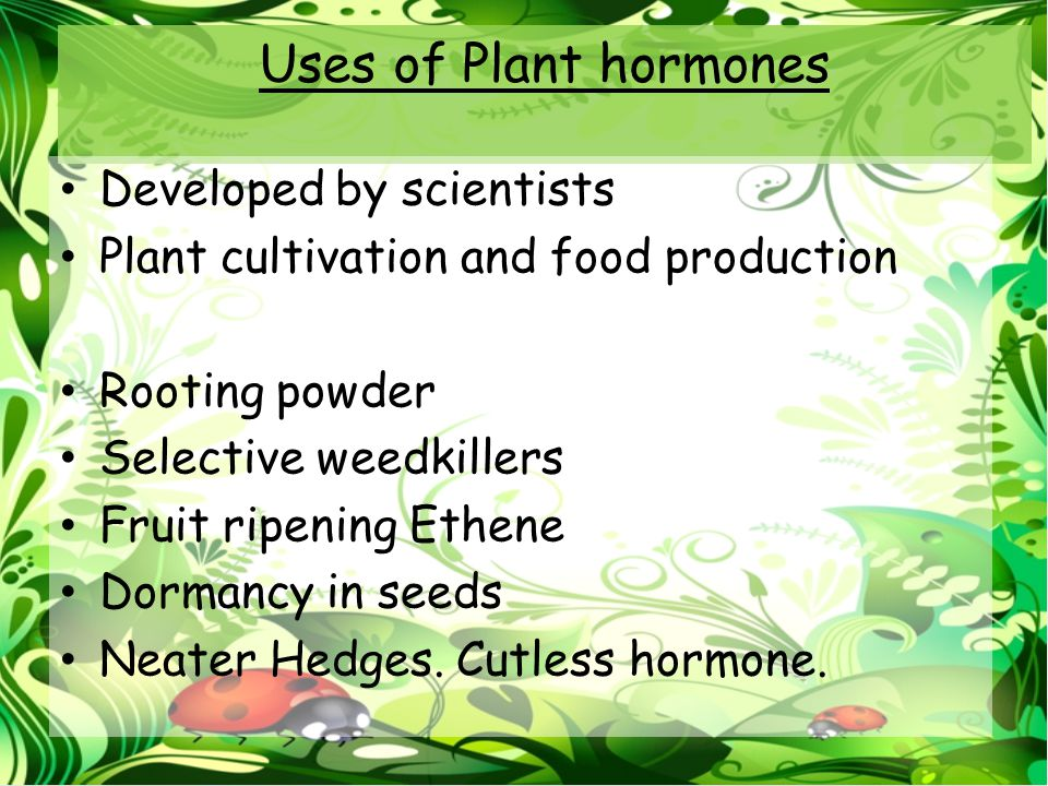 Uses of Plant hormones Developed by scientists